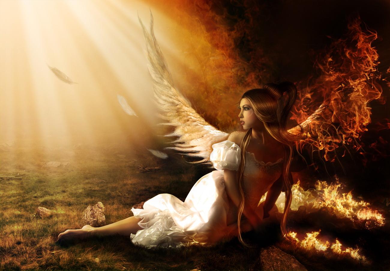 dvd падшие ангелы: